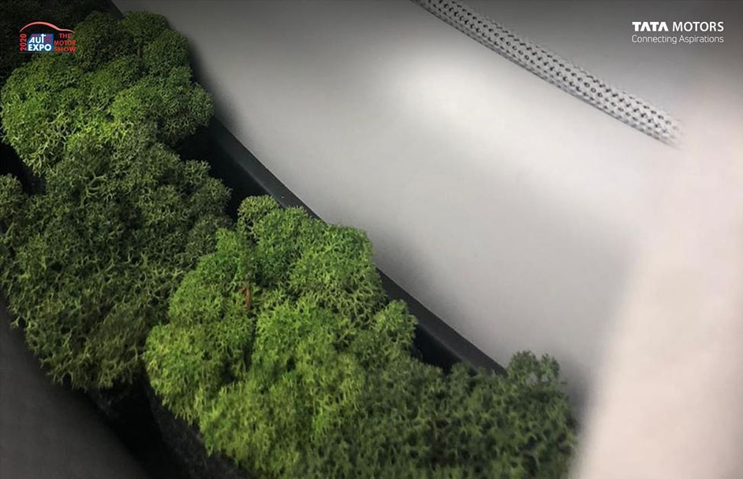 Tata Motors auto expo 2020 concept plants in the cabin teaser